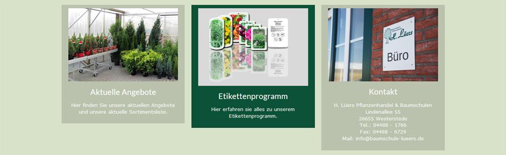 lueers-website-teaser-menu